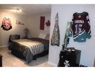 Photo 21: 123 SUNMOUNT PL SE in Calgary: Sundance House for sale : MLS®# C4103208