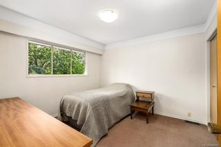 Photo 23: 3350 Maplewood Rd in Saanich: SE Maplewood House for sale (Saanich East)  : MLS®# 844903