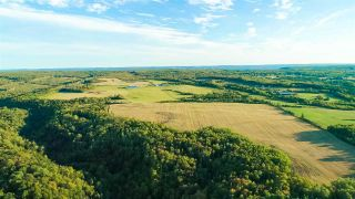 Photo 29: 273 Gospel Road in Brow Of The Mountain: 404-Kings County Residential for sale (Annapolis Valley)  : MLS®# 202019843
