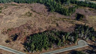 Photo 5: Lot 8 Blacktail Rd in : PQ Qualicum North Land for sale (Parksville/Qualicum)  : MLS®# 870790