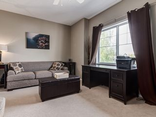 Photo 24: 87 Chapman Circle SE in Calgary: Chaparral House for sale : MLS®# 	C4064813