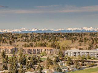 Photo 14: 1216 8710 Horton Road SW in Calgary: Haysboro Apartment for sale : MLS®# A1144532