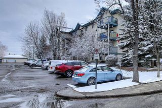 Photo 29: 110 11 DOVER Point SE in Calgary: Dover Apartment for sale : MLS®# A1118273