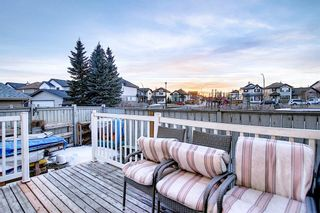 Photo 17: 85 Tarington Landing NE in Calgary: Taradale Semi Detached for sale : MLS®# A1079006
