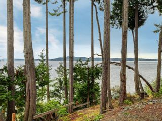 Photo 40: 3615 Crab Pot Lane in : ML Cobble Hill House for sale (Malahat & Area)  : MLS®# 878563