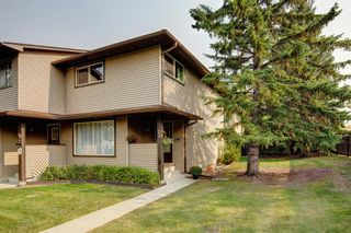 Main Photo: 13 380 Bermuda Drive NW in Calgary: Beddington Heights Row/Townhouse for sale : MLS®# A1145178