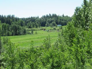Photo 45: 391043 Range Road 5-0 Road: Condor Agriculture for sale : MLS®# A1122824