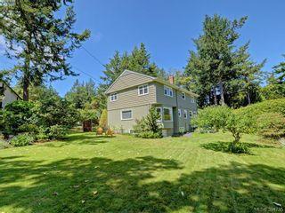 Photo 19: 4537 Tiedemann Pl in VICTORIA: SE Gordon Head House for sale (Saanich East)  : MLS®# 791348