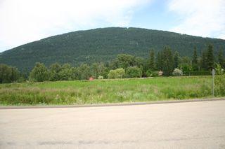Photo 11: 1190 Northeast 51 Street in Salmon Arm: Vacant Land for sale (NE Salmon Arm)  : MLS®# 10118659