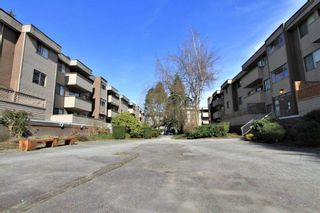 """Photo 16: 23 2444 WILSON Avenue in Port Coquitlam: Central Pt Coquitlam Condo for sale in """"ORCHARD"""" : MLS®# R2247251"""