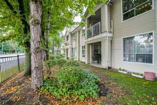 """Photo 20: 13 10038 150 Street in Surrey: Guildford Townhouse for sale in """"MAYFIELD GREEN"""" (North Surrey)  : MLS®# R2342820"""