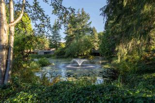 """Photo 31: 203 333 WETHERSFIELD Drive in Vancouver: South Cambie Condo for sale in """"Langara Court"""" (Vancouver West)  : MLS®# R2503583"""