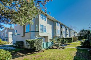 """Photo 14: 23 3476 COAST MERIDIAN Road in Port Coquitlam: Lincoln Park PQ Townhouse for sale in """"Laurier Mews"""" : MLS®# R2345938"""