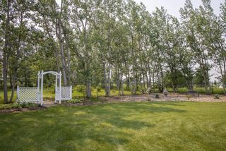 Photo 45: Private Treed Acreage in the City of Airdrie