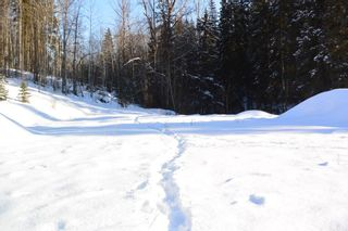 Photo 10: LOT A W 16 Highway in Smithers: Smithers - Town Land for sale (Smithers And Area (Zone 54))  : MLS®# R2533470