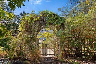 Photo 22: 951 Jasmine Ave in Saanich: SW Marigold House for sale (Saanich West)  : MLS®# 886878