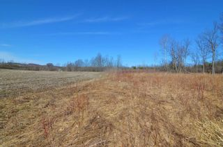 Photo 16: Vl Shelter Valley Road in Cramahe: Rural Cramahe Property for sale : MLS®# X5206281