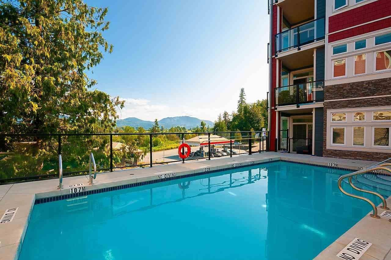 Photo 18: Photos: #102 2238 Whatcom Rd in Abbotsford: Abbotsford East Condo for rent