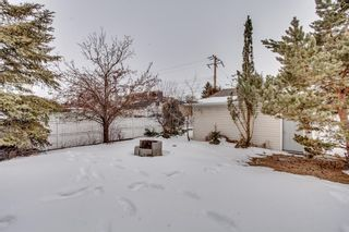 Photo 4: 4727 21A Street SW in Calgary: Garrison Woods Detached for sale : MLS®# A1092290