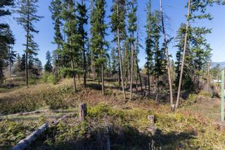 Photo 10: 3281 Hall Road, in Kelowna: Vacant Land for sale : MLS®# 10232100