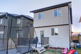Photo 44: 82 Nolan Hill Drive NW in Calgary: Nolan Hill Detached for sale : MLS®# A1042013