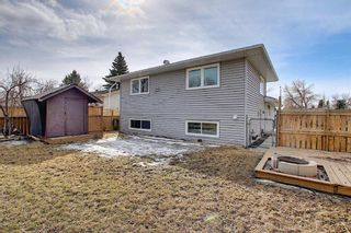 Photo 35: 315 Banister Drive: Okotoks Detached for sale : MLS®# A1089358