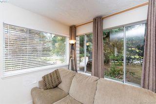 Photo 15: 4019 Malton Ave in VICTORIA: SE Mt Doug House for sale (Saanich East)  : MLS®# 770733