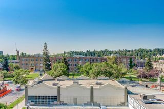 Photo 26: 503 1501 6 Street SW in Calgary: Beltline Apartment for sale : MLS®# A1130422