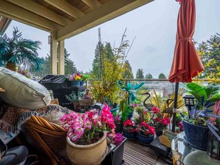 Photo 10: 348 5160 DAVIS BAY Road in Sechelt: Sechelt District Condo for sale (Sunshine Coast)  : MLS®# R2250768