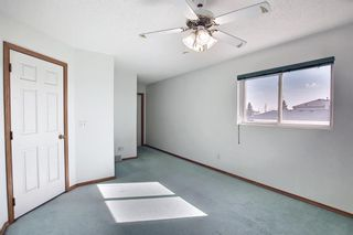 Photo 18: 351 Applewood Drive SE in Calgary: Applewood Park Detached for sale : MLS®# A1094539