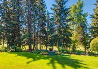 Photo 47: 96 Willow Park Green SE in Calgary: Willow Park Detached for sale : MLS®# A1125591