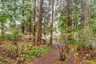 Photo 14: 1285 RIVER Drive in Coquitlam: River Springs House for sale : MLS®# R2160017