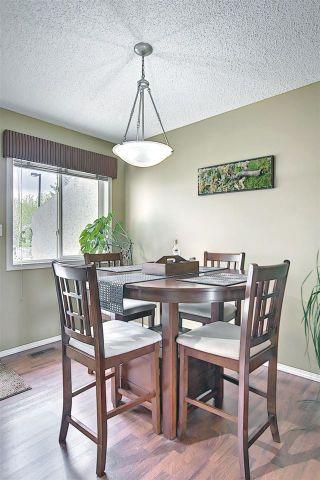 Photo 13: 14 11717 9B Avenue in Edmonton: Zone 16 Townhouse for sale : MLS®# E4244268