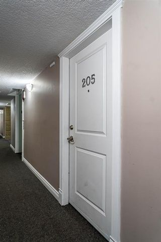 Photo 4: 205 60 38A Avenue SW in Calgary: Parkhill Apartment for sale : MLS®# A1119493