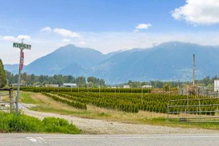 Photo 25: 46509 BRICE Road in Chilliwack: Fairfield Island House for sale : MLS®# R2573147