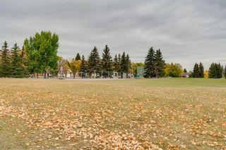 Photo 26: 151 Millrise Drive SW in Calgary: Millrise Detached for sale : MLS®# A1037985