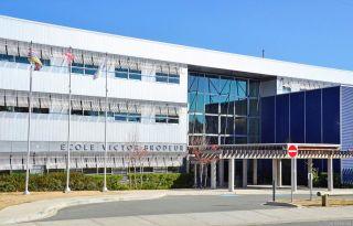 Photo 25: 1038 Wollaston St in : Es Old Esquimalt House for sale (Esquimalt)  : MLS®# 866968