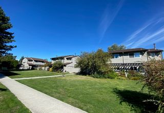 """Main Photo: 5019 57 Street in Delta: Hawthorne Townhouse for sale in """"GREEN ROAD VILLAGE"""" (Ladner)  : MLS®# R2618138"""