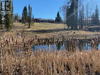 Photo 45: 53118 Range Road 224A in Rural Yellowhead County: House for sale : MLS®# A1100110