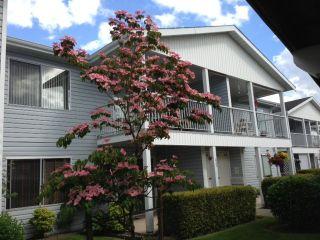 Photo 1: 238 32691 GARIBALDI Drive in Abbotsford: Home for sale : MLS®# F1314176