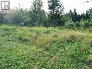 Photo 3: 555 Queens RD in Sackville: Vacant Land for sale : MLS®# M133180