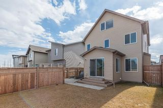 Photo 34: 46 WALDEN Court SE in Calgary: Walden Detached for sale : MLS®# C4238611