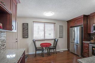 Photo 12: 21 Erin Ridge Road SE in Calgary: Erin Woods Detached for sale : MLS®# A1052761