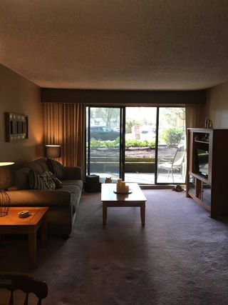 """Photo 10: 214 9857 MANCHESTER Drive in Burnaby: Cariboo Condo for sale in """"BARCLAY WOODS"""" (Burnaby North)  : MLS®# R2145795"""