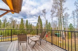 Photo 27: 34269 Range Road 61: Rural Mountain View County Detached for sale : MLS®# A1104811