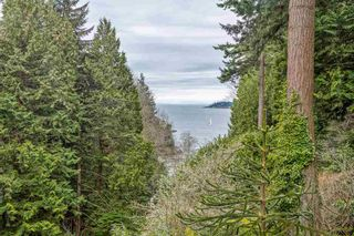 """Photo 5: 6170 EASTMONT Drive in West Vancouver: Gleneagles Land for sale in """"GLENEAGLES"""" : MLS®# R2581787"""