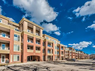 Photo 28: 307 2 HEMLOCK Crescent SW in Calgary: Spruce Cliff Apartment for sale : MLS®# A1076782