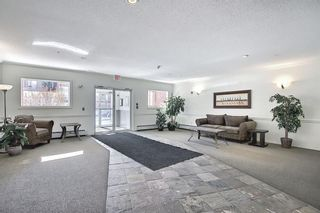Photo 4: 110 838 19 Avenue SW in Calgary: Lower Mount Royal Apartment for sale : MLS®# A1073517