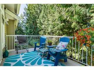 """Photo 35: 15 35253 CAMDEN Court in Abbotsford: Abbotsford East Townhouse for sale in """"Camden Court"""" : MLS®# R2600952"""