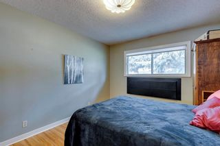 Photo 16: 2224 38 Street SW in Calgary: Glendale Detached for sale : MLS®# A1136875